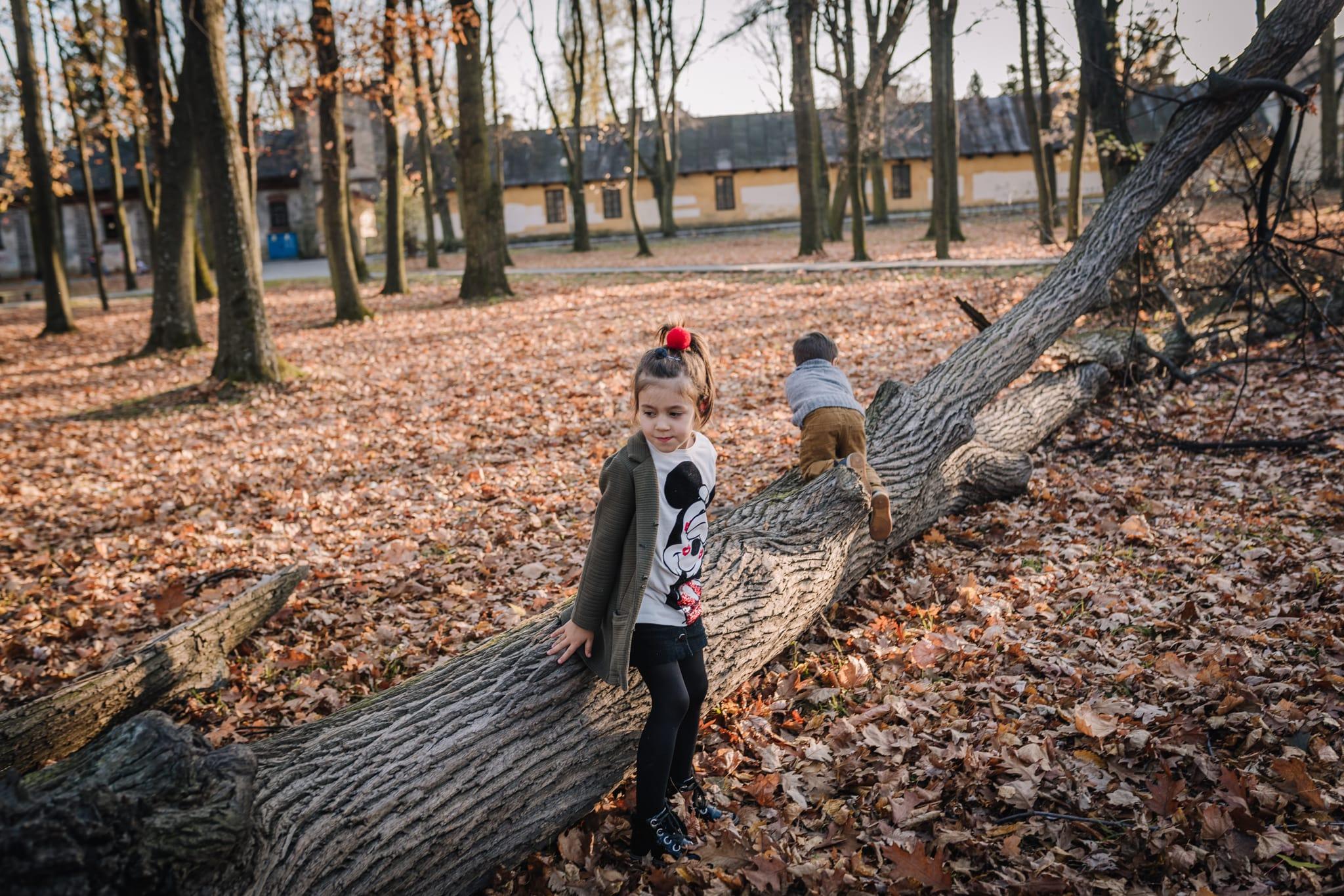 dziewczynka z bratem siedzą na połamanym drzewie