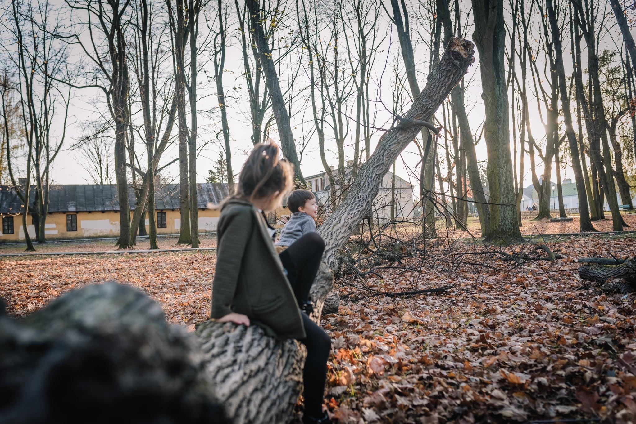 dziewczynka z bratem siedzą na drzewie w parku
